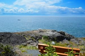 Otter-Point-Regional-Park-4