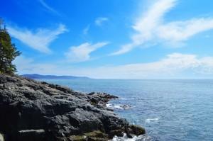Otter-Point-Regional-Park2