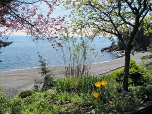 A-view-of-the-beach-on-May-1st