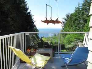Seacliff-deck-1