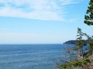 Seacliff-view-from-the-gazebo-Nov-3
